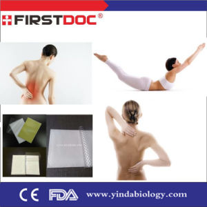 2015 Good Quality Pain Relief Gel Patch with CE FDA Approved pictures & photos
