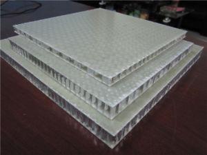 FRP Aluminum Honeycomb Panels pictures & photos