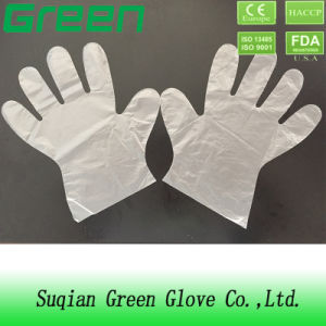 PE Where to Buy Disposable Gloves pictures & photos