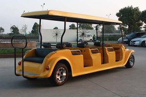 CE Certificate 8 Seaters Classic Electric Sightseeing Car (DN-8D) pictures & photos