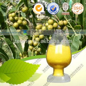 Phellodendron Amurense Bark Extract Rhizoma Coptidis Extract pictures & photos