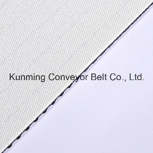 China Conveyor Belt Corrugated for Treadmill and Transportantion pictures & photos