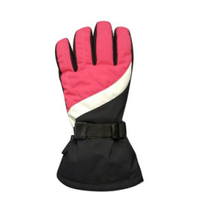 Outdoor Sports Gloves, Fg005