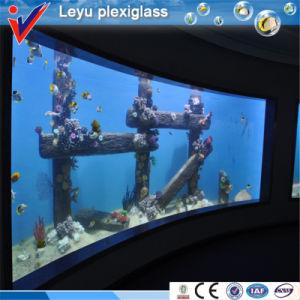 Clear Plexiglass Window Panles for Aquarium pictures & photos