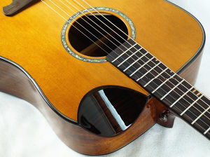 China Factory Dreadnaught Solid Top Acoustic Steel String Guitar Sg02can -41 pictures & photos