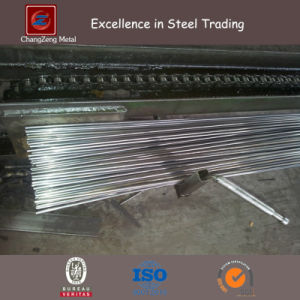 60 Simna Alloy Spring Steel Wire for Vehicle (CZ-W06) pictures & photos