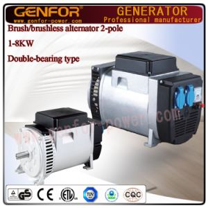 6kVA Double-Bearing Self-Excited 2-Pole Single Phase or Three Phase Alternator with Itay Linz Type