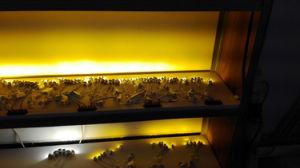 2W 12V 24V Mini Bulb Cabinet Light COB LED Lamp pictures & photos