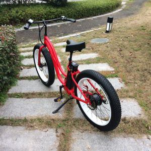 Snow Fat Tire 48V 500W Electric Bike pictures & photos