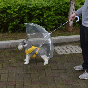 Transparent Waterproof Mini Pet Dog Umbrella with Leash pictures & photos