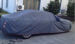 Car Cover (HOT RACING) pictures & photos