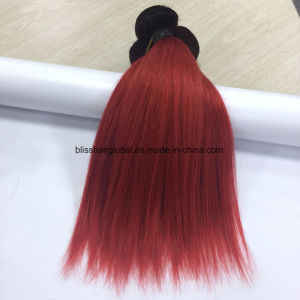 Brazilian Virgin Hair Ombre Color 10 Inch Ot1b-Red Straight pictures & photos