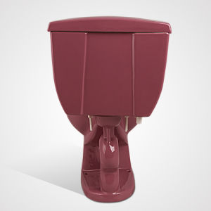 Ceramic Colourful Dual Flushing 2PC Toilet for Wholesales, Purplish Red pictures & photos