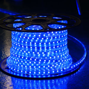 Purple Red Color 60LEDs SMD5050 220V IP65 LED Rope Light pictures & photos