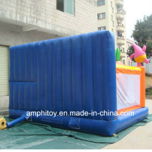 Supply Inflatable Bouncy Castle pictures & photos