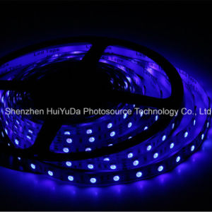 High Brightness Blue Color IP20 SMD5050 Chip 60LEDs 14.4W DC12V LED Strip pictures & photos