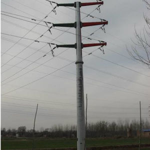 220kv 230kv Steel Tube Poles pictures & photos