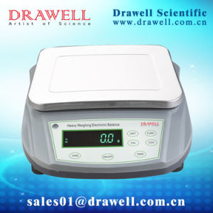 High Capacity Electronic Balance (1g/0.1g; External Calibration) pictures & photos