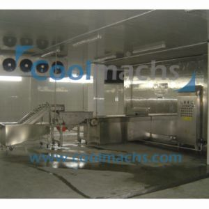 Scallop IQF Double Spiral Freezer Machine/Quick Freezer pictures & photos