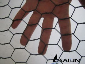 Sailin Hexagonal Wire Netting Fence pictures & photos