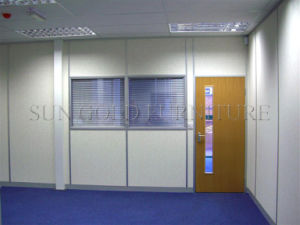 Modern Aluminum Composite Panel Decorative Partition for External Wall (SZ-WS679) pictures & photos