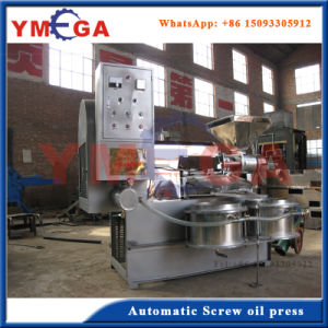 Automatic Screw Type Cold Press Coconut Oil Extracting Machine pictures & photos
