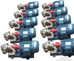 Hydraulic Shaft Extrusion Dosing Gear Pump pictures & photos