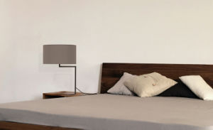 Fashion Modern Metal Bedside Table Lamp for Home or Hotel pictures & photos