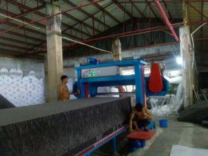 Elitecore Ecmt-115 Automatic Long Sheets Sponge Machinery pictures & photos