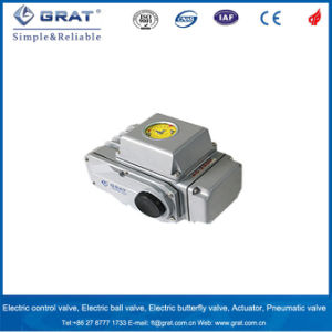 Embeded Intelligent Module Electronic Control Actuator pictures & photos