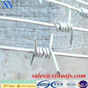 Single Base Galvanized Barbed Wire pictures & photos