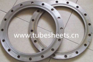 304 316 Stainless Steel Plate Flange pictures & photos