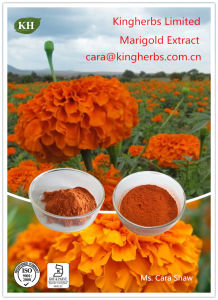 Lutein 5% to 80%, Marigold Extract pictures & photos