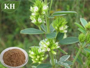 Lespedeza Capitata Extract 10: 1, 12: 1, Flavones 6% by UV (84837-05-8) pictures & photos
