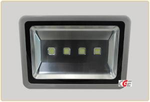 High Lumen Bridgelux COB Waterproof IP65 Outdoor 200W LED Floodlight pictures & photos