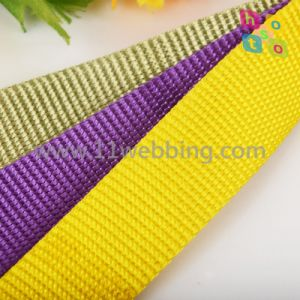 Excellent Strong Nylon Webbing for Dog Collar Harness and Leash pictures & photos