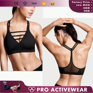 Yoga Sexy Running Gym Fitness Padded Push up Sports Bra pictures & photos