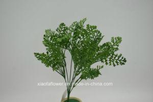 Artificial/Plastic Grass Bush (XF62) pictures & photos