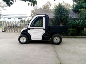 Cargo Vehicle 2 Seater Golf Car 3.5kw Utility Cart