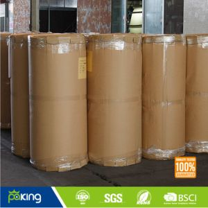 Single Sided BOPP Film Packing Tape Jumbo Roll pictures & photos