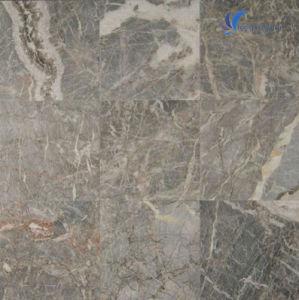Natural Fior Di Pesco Grey Marble Tile pictures & photos