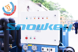 Flake Ice Maker for Europe pictures & photos