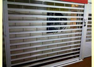 Polycarbonate Glass Vertical Lift Sectional Transparent Roll up Door Garage Door (Hz-TD0616) pictures & photos