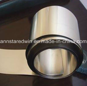 Supply Nickel Strip/Nickel Coil/Nickel Plate for Industry pictures & photos