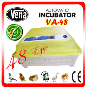 High Quality 48 PCS Eggs Mini Duck Egg Incubator pictures & photos