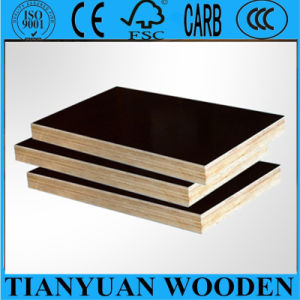 Black / Brown Film Faced Plywood pictures & photos