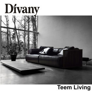 Divany Sectional Sofa with High Quality Leather D-36 pictures & photos