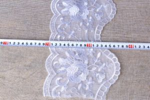 Popular Cotton/Nylon/Embroidery Lace pictures & photos