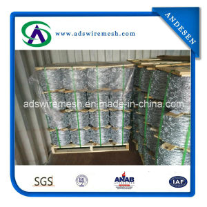 Hot-Dipped Galvanized Barbed Wire pictures & photos