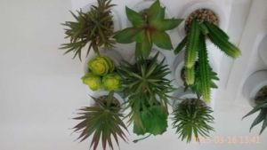 Best Selling Artificial Plants of Succulent Gu-Jys-00027 pictures & photos